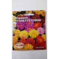 Жоржини суміш Ріголетто (НК ЕЛІТ) 0,3 г