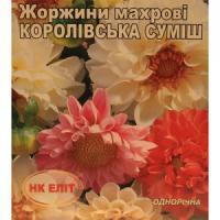Жоржини махрові Королівська суміш (НК ЕЛІТ) 0,5 г