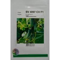 Огірок SV 4097 CV F1 (Seminis) 100 нас.